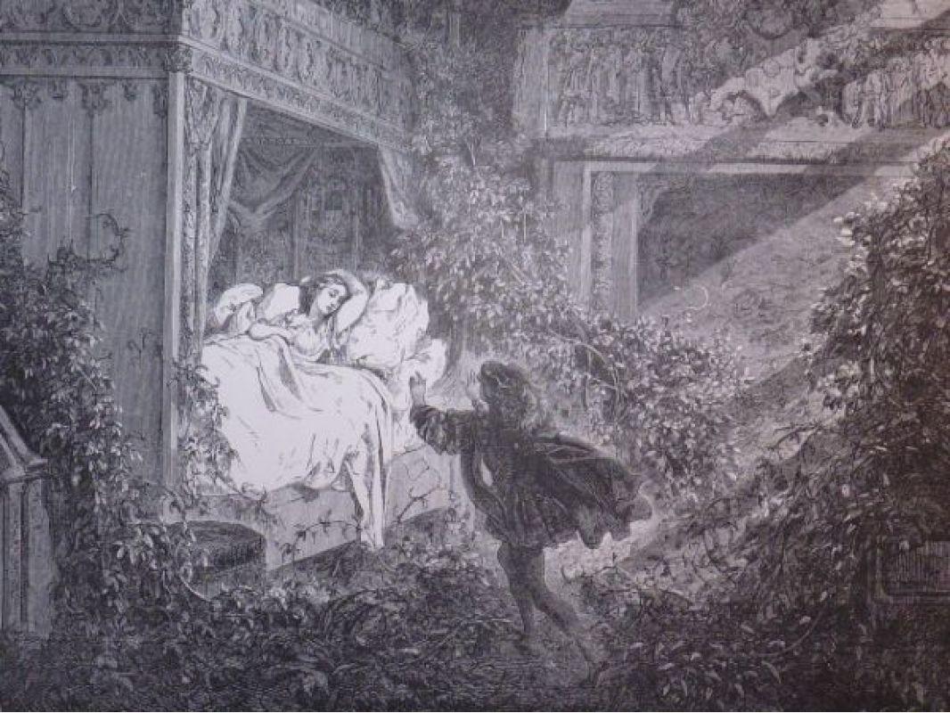 DORE  Charles Perrault, Contes, La Belle au Bois Dormant  ~ La Belle Au Bois Dormant De Perrault
