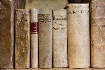Livres Anciens en vélin