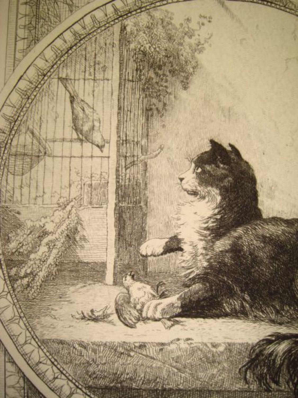 la fontaine fables le chat et les deux moineaux gravure originale l 39 eau forte sur papier. Black Bedroom Furniture Sets. Home Design Ideas