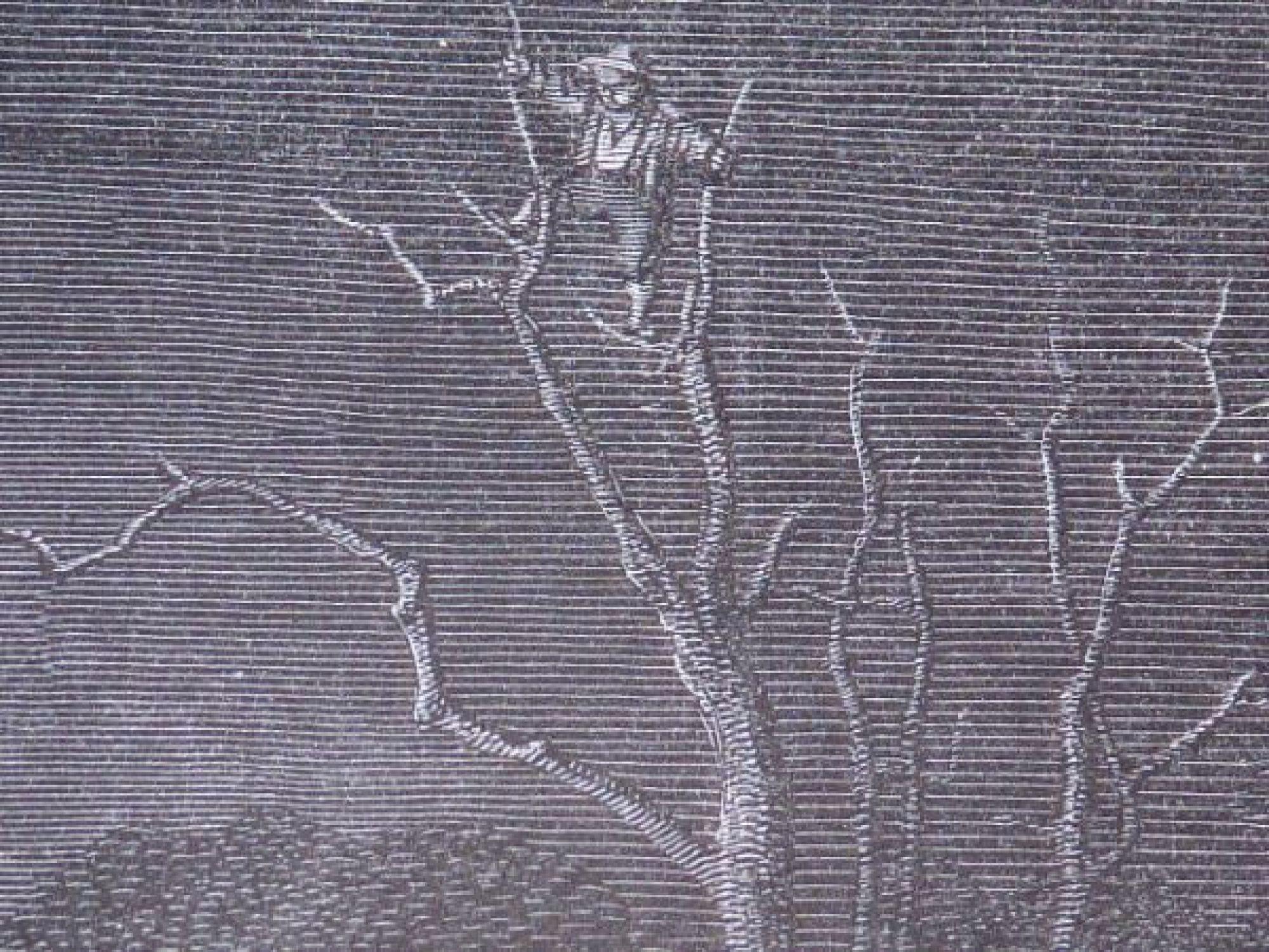 charles perrault contes le petit poucet et ses fr res perdus dans les bois gravure originale. Black Bedroom Furniture Sets. Home Design Ideas