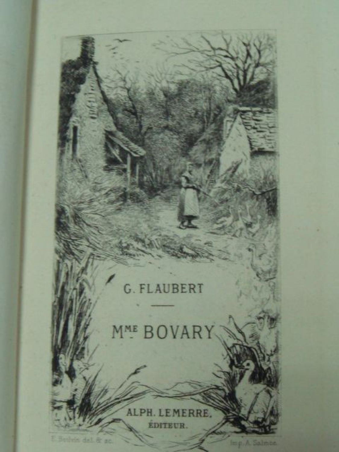 flauberts descriptive artistry of madame bovary Three tales has 4,220 ratings and 240 reviews seemita said: ever wondered if stark realities of life were humans, how would they converse what would de.
