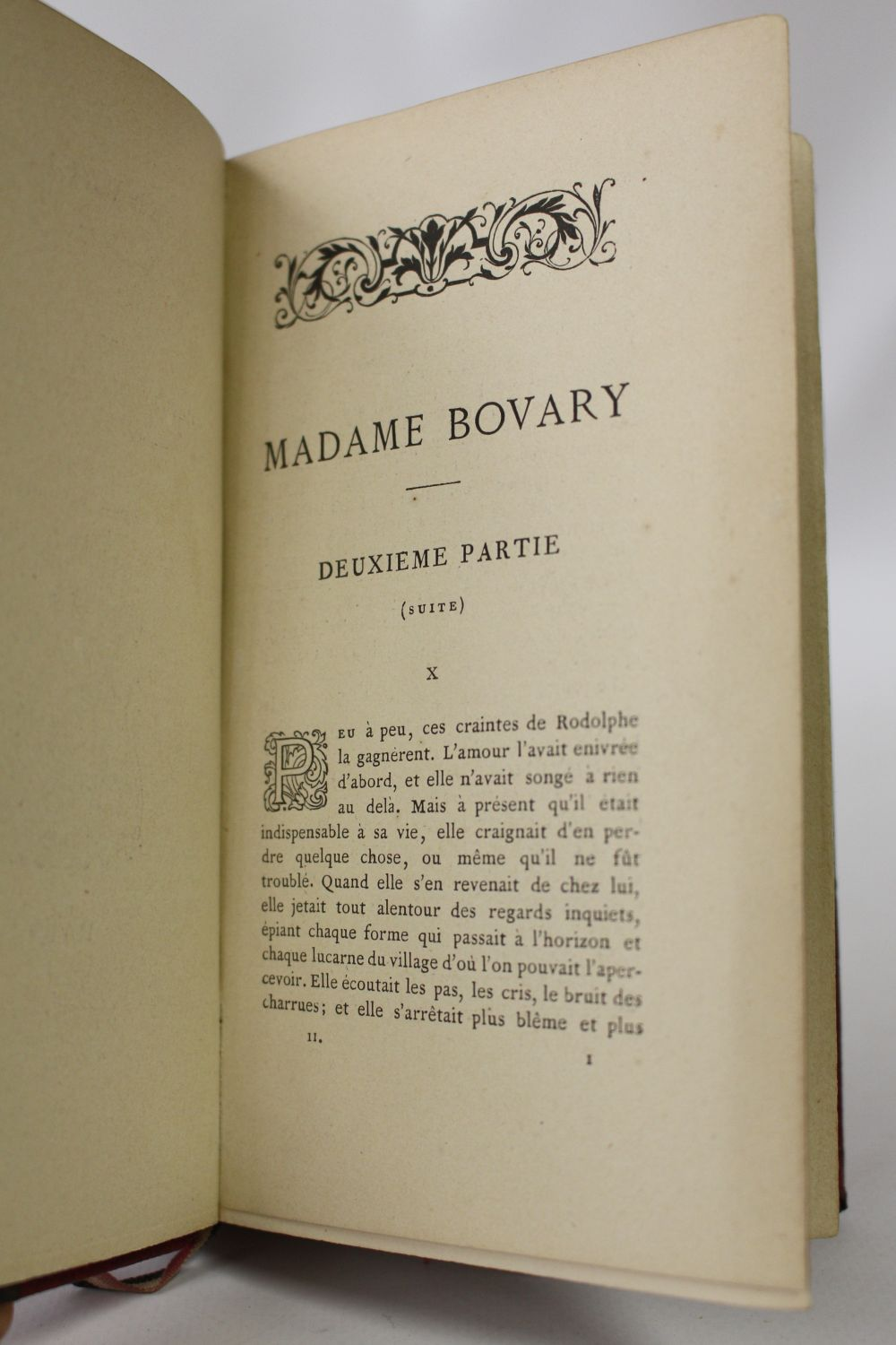 Madame bovary paper