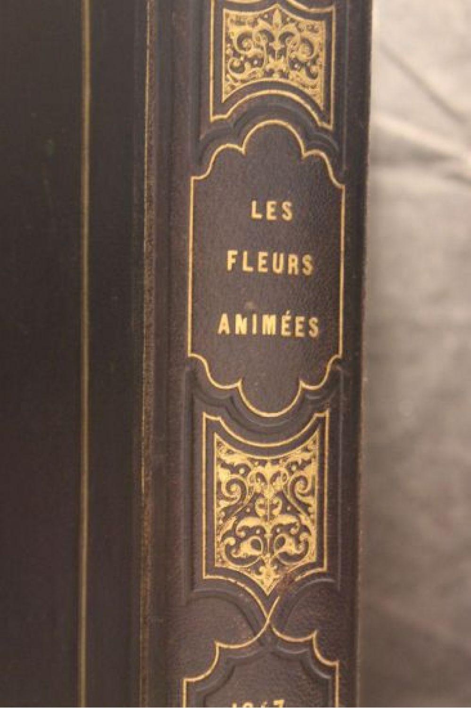 karr les fleurs anim es first edition edition. Black Bedroom Furniture Sets. Home Design Ideas