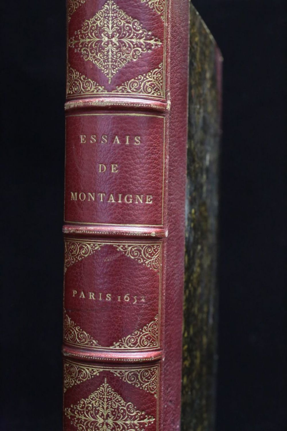 understanding montaignes essays Montaigne in his apology for raymond sebond the essays of michel de montaigne were one of the montaigne's essays focus on the philosophical understanding.