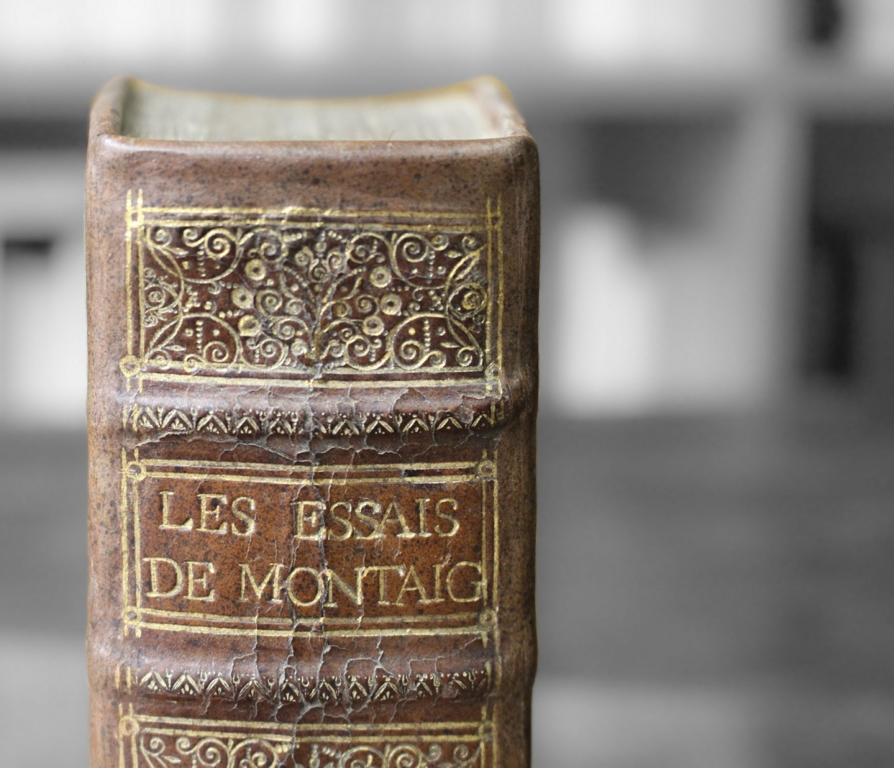 montaigne by michel de montaigne Michel de montaigne is on facebook join facebook to connect with michel de montaigne and others you may know facebook gives people the power to share.