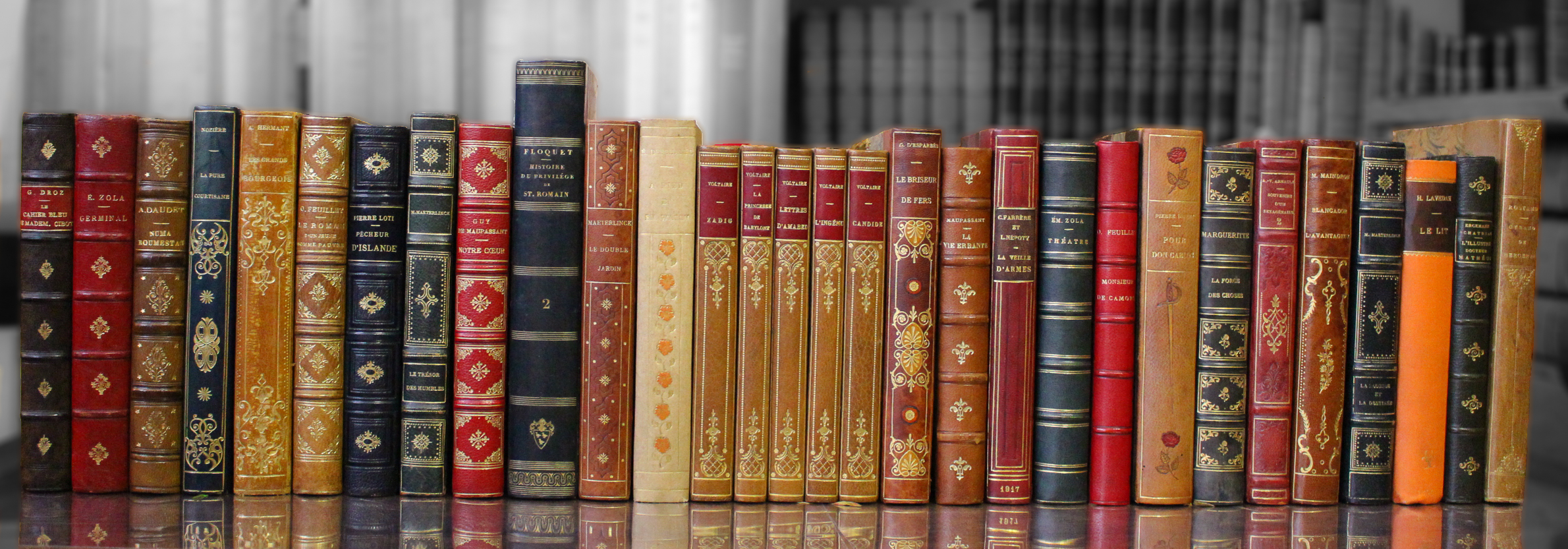 Bibliothèque idéale